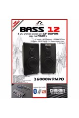 BASS 12