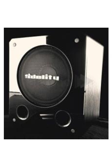 FIDELITY - SUBWOOFER FDT-123SW